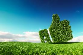Nuevo Greenwashing and Advertising paper: 4A´s